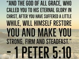 Joy Restoration