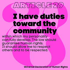 article_29.png