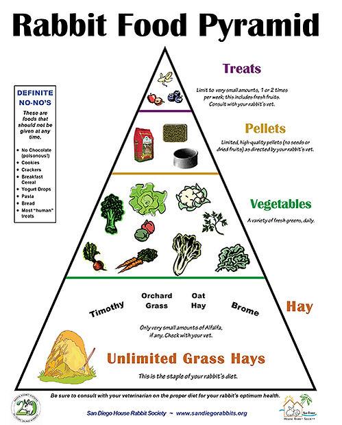 rabbitfoodpryramid.jpg