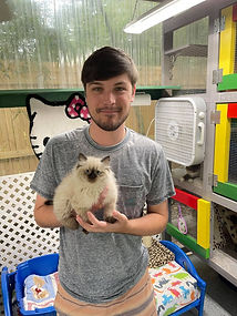 """Leson Rebowe of Leson Chevrolet in Harvey Louisiana got a Ragdoll """"Logan"""" from us who is now 2 years old.  Leson came to get a Ragamuffin he named LANE in June 2021. He brings his kitties with him everywhere."""