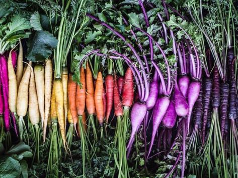 Finding Harmony Through Food