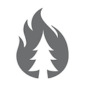 WILDFIRES.png