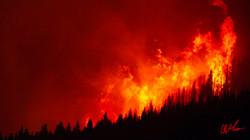 shellrockfire