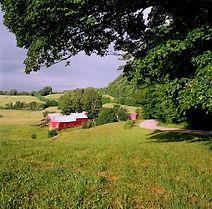 Jenny Farm (1 of 1).jpg