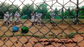 University Baseball League