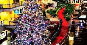 Sapporo Factory Christmas tree lighting ceremony