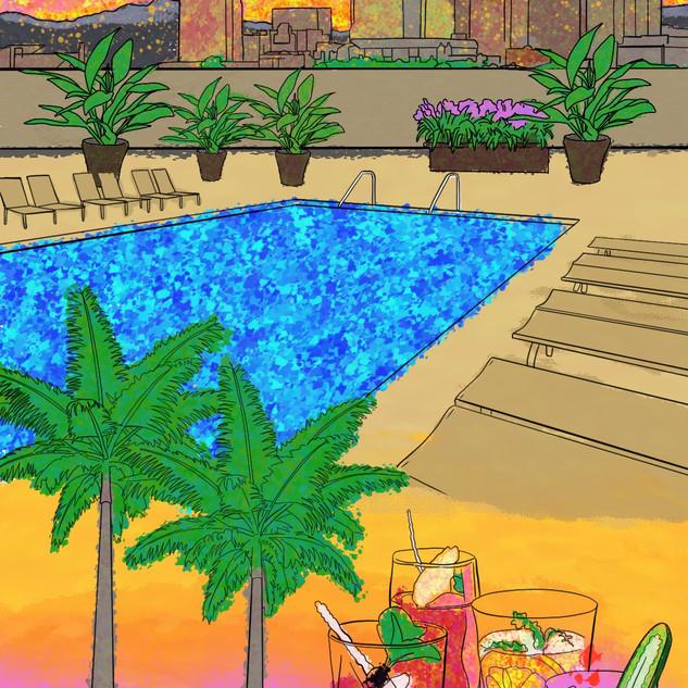 Palomar Pool
