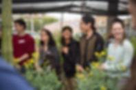 garden3 c- closeup.jpg