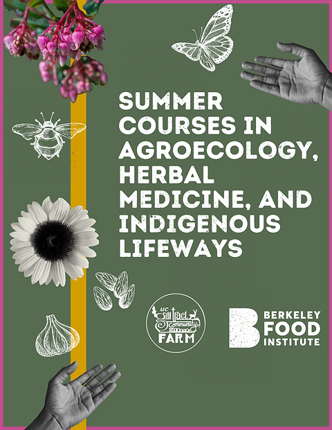 banner summer courses (1).png