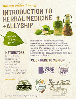 Introduction to Herbal Medicine + Allysh