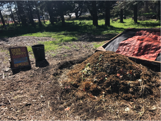 Organic Matter Matters: Composting at the Gill Tract Farm