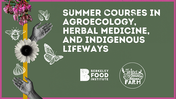 Dark green banner with collaged hands and illustrated nature elements emerging. Summer courses in agroecology, herbal medicine, and indigenous lifeways