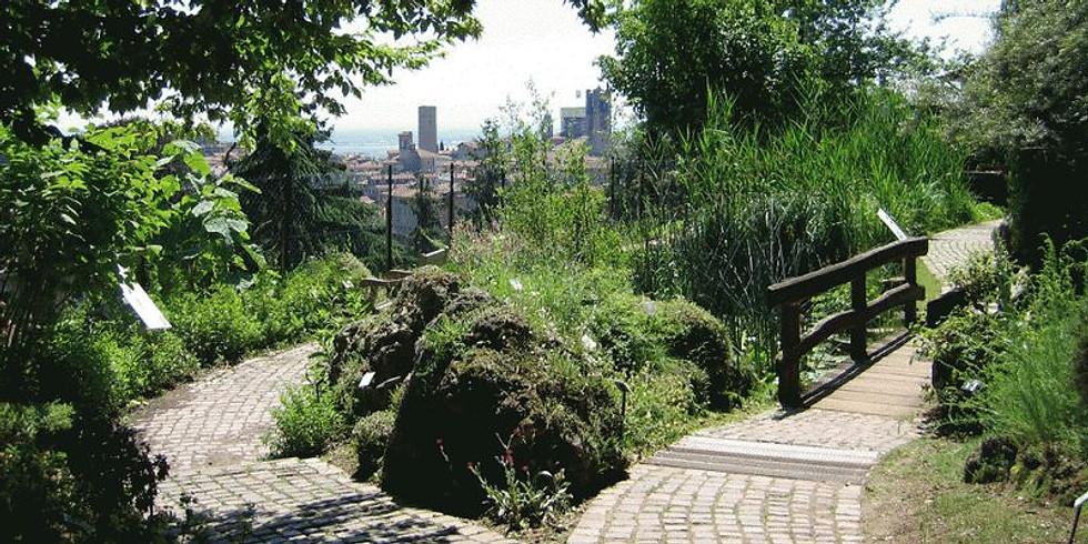 Tour dei giardini di Città Alta