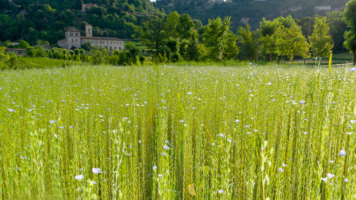 valle d'Astino monastero bergamo
