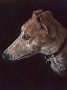 Spud, Longdog_