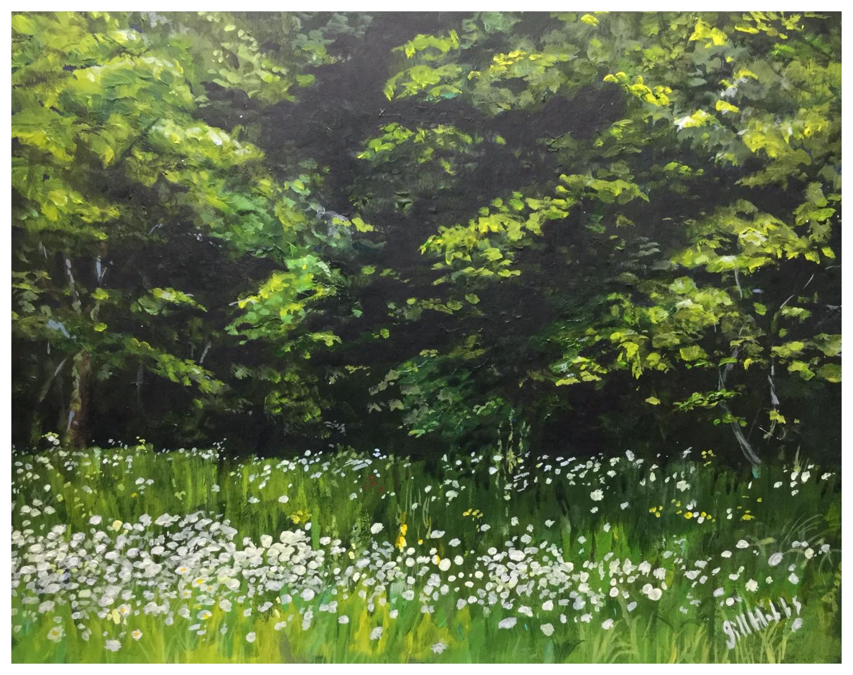 Hardwick daisies.