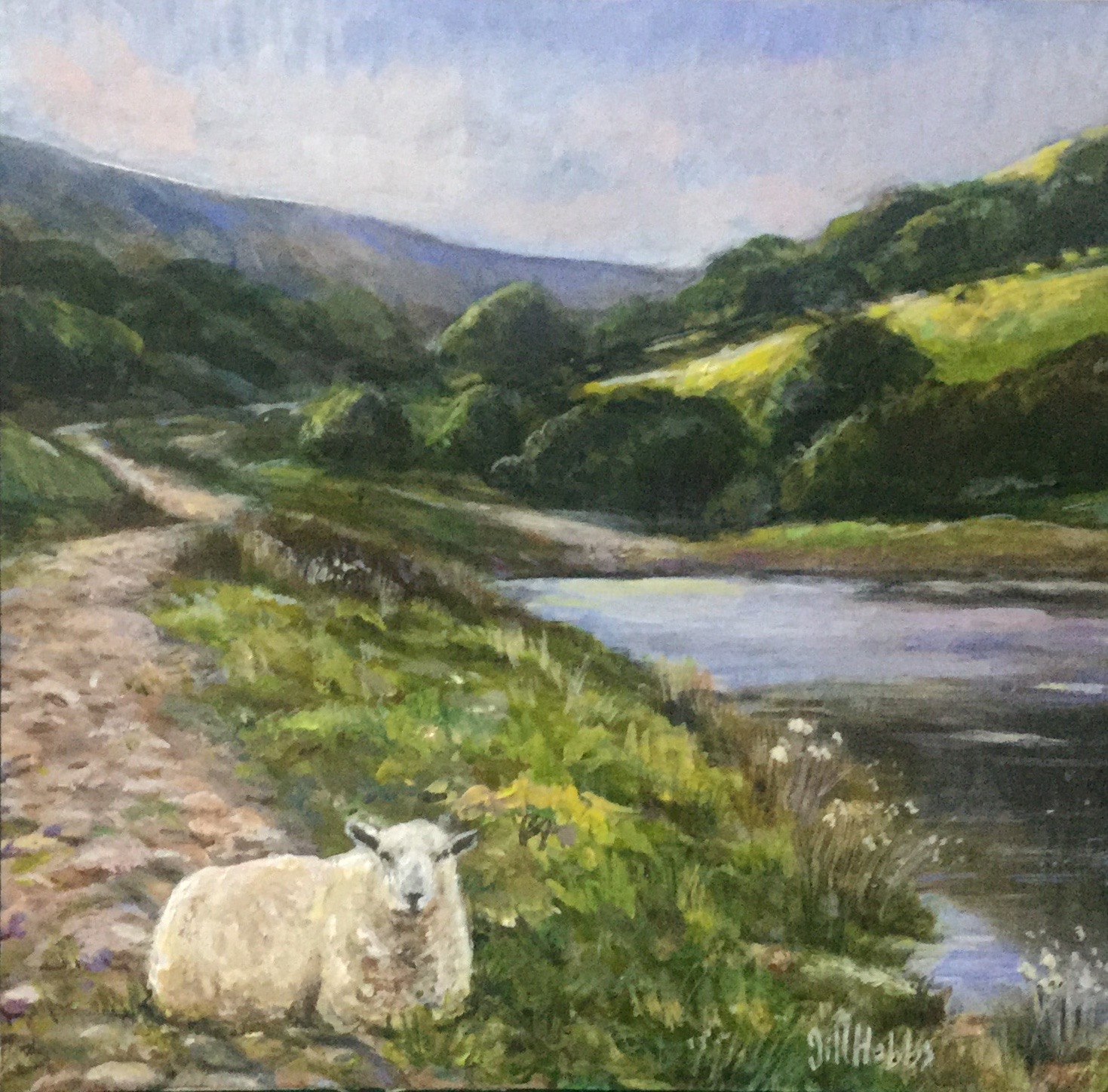 The Ewe, Cwm Lickey Pond. Torfaen