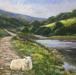 The Ewe, Cwm Lickey Pond. Torfaen