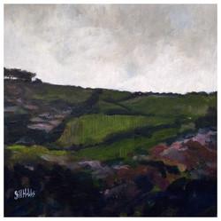 Hills over Llandovery. Sold.