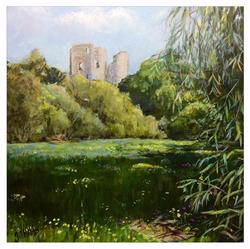 Castle Meadows, Usk.