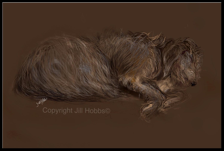 Whispering dog Harris.