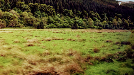 The highlands & the Lowlands