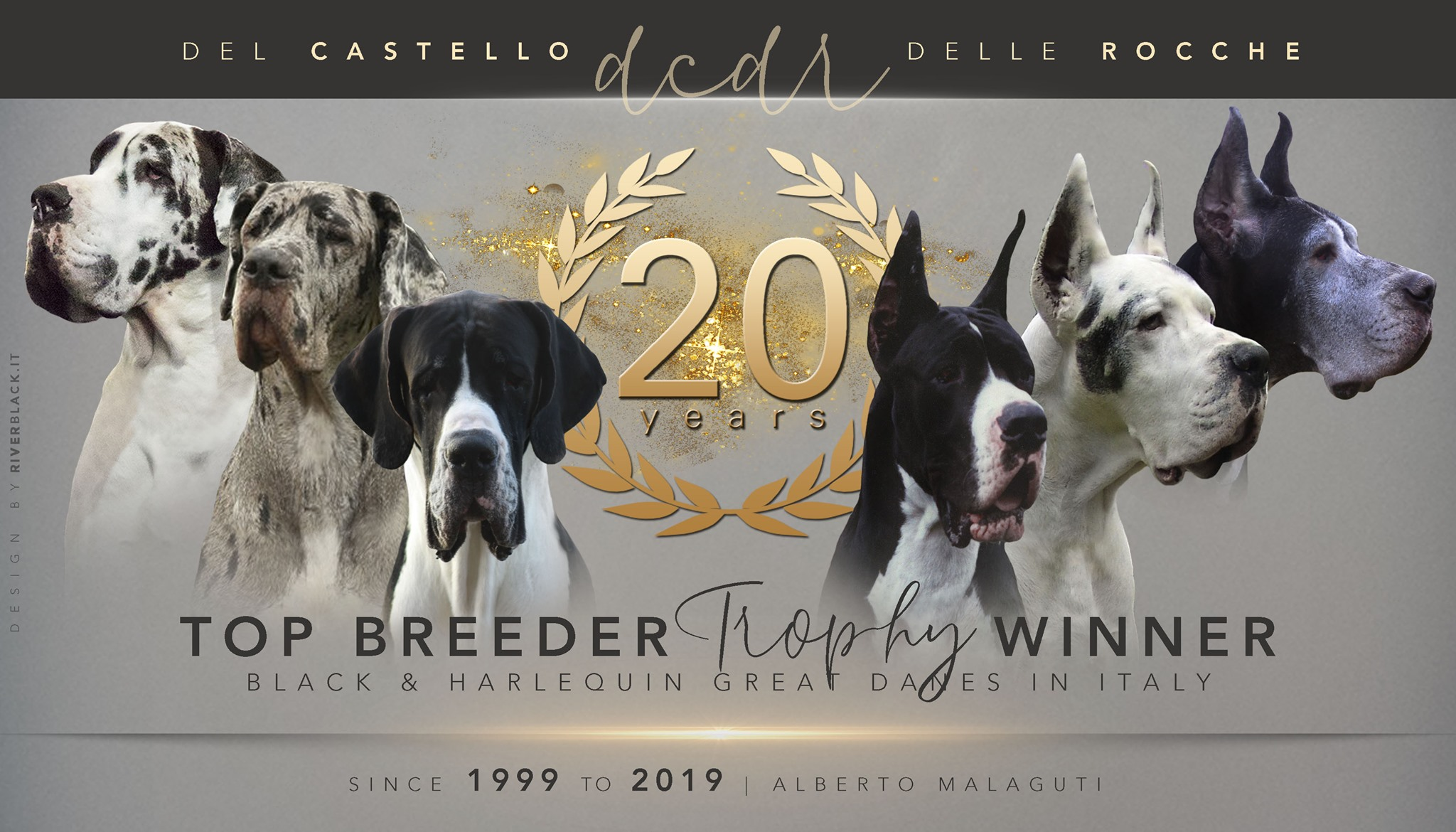 20 years Top breeder trophy winner