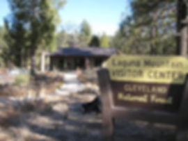 visitor services 4.jpg