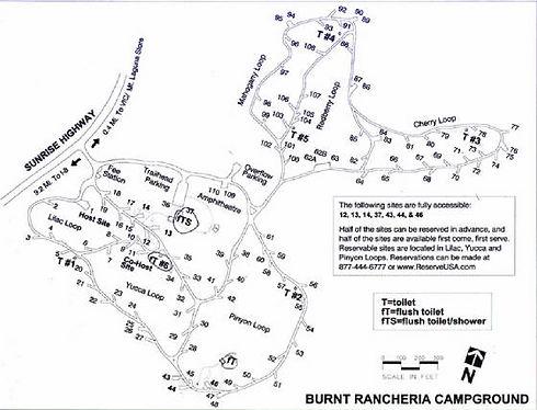 burnt campground_edited.jpg