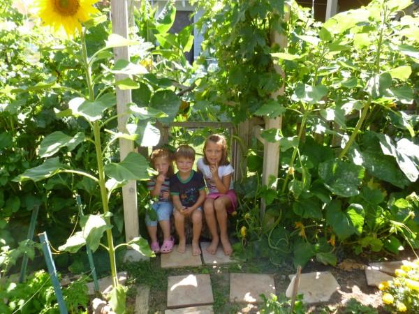 Celebrate Summer Sunflowers!
