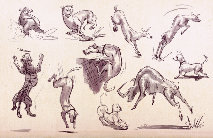 Animal sketches.png