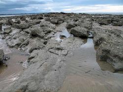 rocks harvbay-1280-1280.jpg
