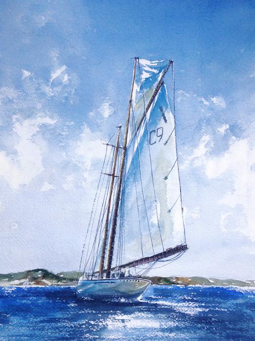 Яхты в Сен-Тропе #2