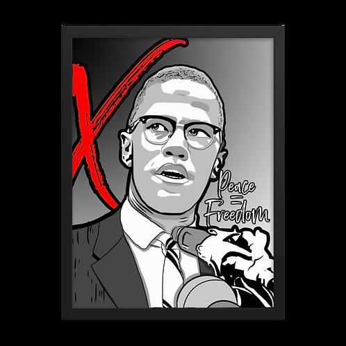 X Framed Poster