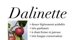 Dalinette