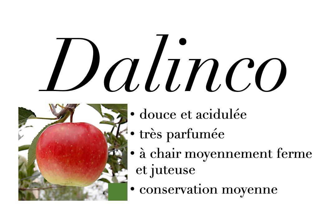 Dalinco