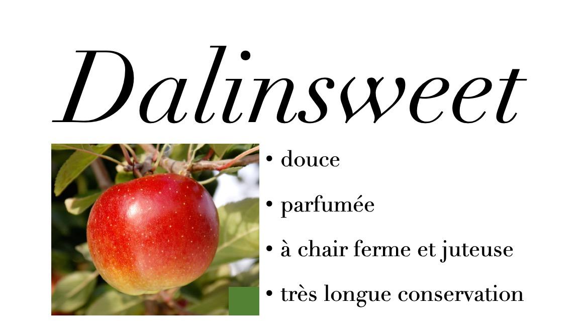 Dalinsweet