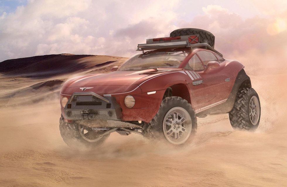 Rally Fighter In Baja