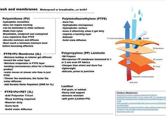Mesh And Membranes.JPG