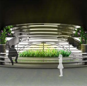 Winning Design in Biophilia Competition
