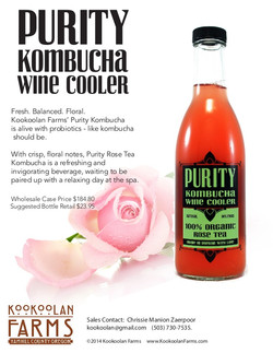 Purity Kombucha Selling Sheet