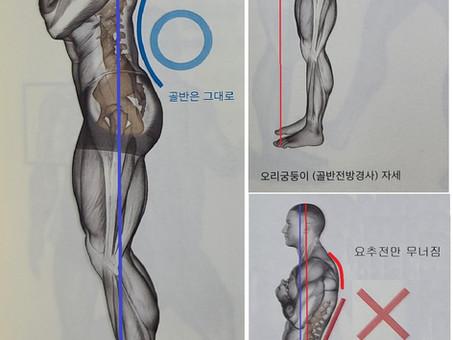 요통과 척추 자세의 관계, 척추압박골절, 허리디스크, 척추관협착증, 전방전위증