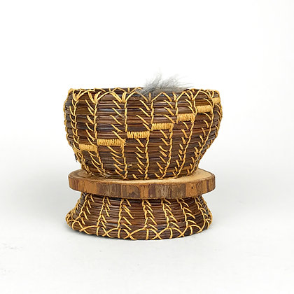 Light brown Ponderosa pine needle basket with light colored waxed linen stitching, volunteer feather accent