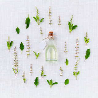 Essential Oils to Treat Dogs & Cats