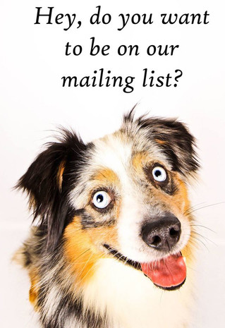 Vertical Response free newsletter