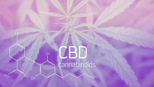 CBD lila.jpg