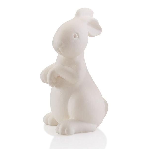 bunnywithpawsup.jpg
