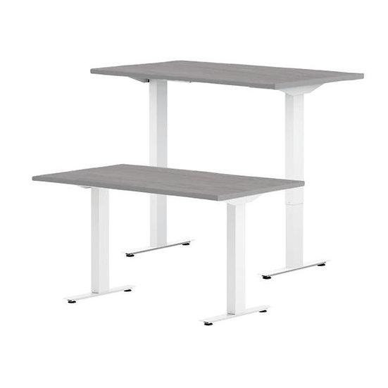 "48"" Height Adjustable Desk"