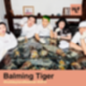 HLF19_Balming Tiger.png