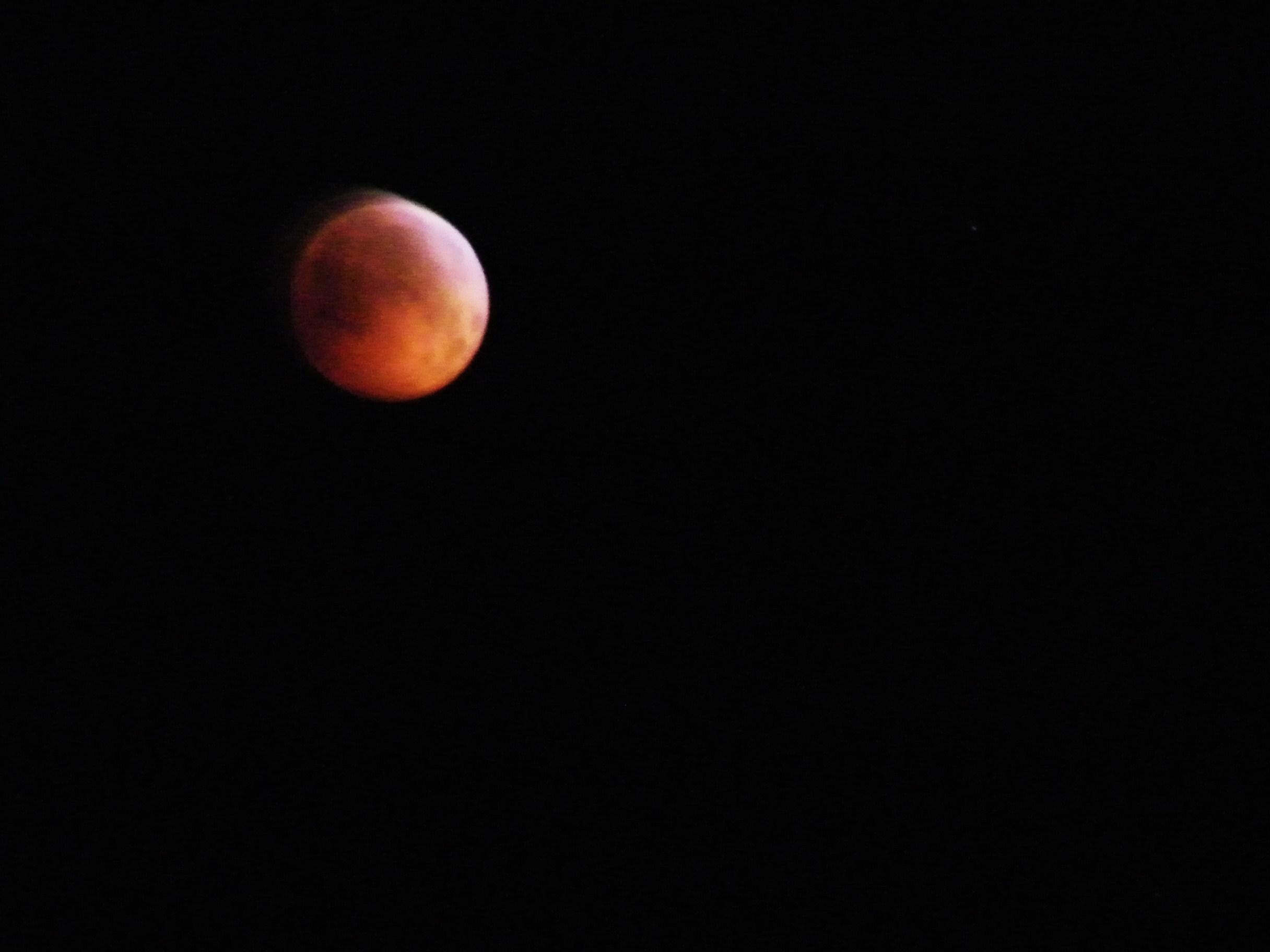 2010 Lunar Eclipse 2010